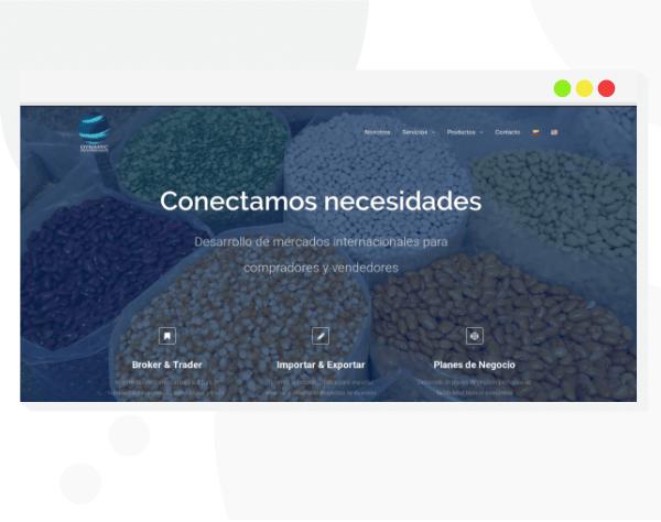 Diseño y desarrollo de páginas web a la medida