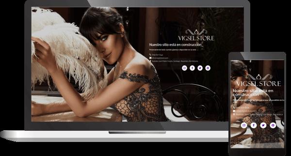 Diseño y desarrollo de páginas web plattinux