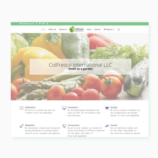 diseño y programacion paginas web venezuela